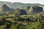 Valle de Vinales with mogotes in Cuba — Stock Photo
