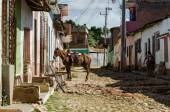 Horse on street of Trinidad — Stock Photo