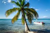 Caribbean beach with boat — Stock Photo