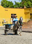 Typical Cuban worker on horse carriage — Stock Photo