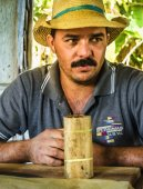 Traditional manufacture of cigars — Stock Photo