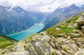Beautiful alpine landscape with flowers, Austria — Stock Photo