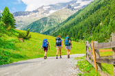 Young mountaineers in Alps, Austria — Stock Photo