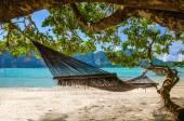 Hammock hanging under exotic tree on beach — Stock Photo