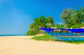 Exotic beach with colorful boat, tall palm trees  — Foto Stock