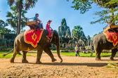 Turister rida elefant på howdah stol, Kambodja — Stockfoto
