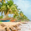 Tropical beach, palms and colorful fishing boats — Stock Photo #74066283