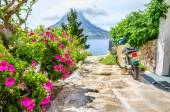 Flowers and scooter parked on road Greece — Stock Photo