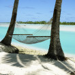 Empty hammock slung between to tropical palm trees. — Stock Photo #72479927