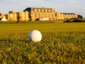 Golf ball lying in fairway, St. Andrews, Scotland. — Stok fotoğraf