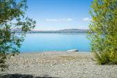 View through green trees across stony shore of Lake Pukaki. — Stock Photo