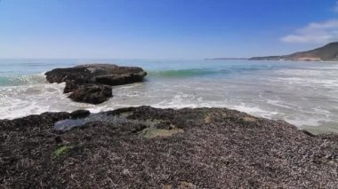 Waves crash onto barnacle covered rocks — Stock Video