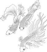 Aquarium fish black — Wektor stockowy