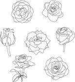 Linear roses set on white — Stock Vector