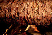 Delicious Doner Kebab — Stock Photo