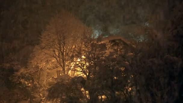 Heavy snowfall in winter — Vídeo de stock