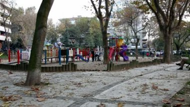 Children playing in the park HD 1080p — Stock Video