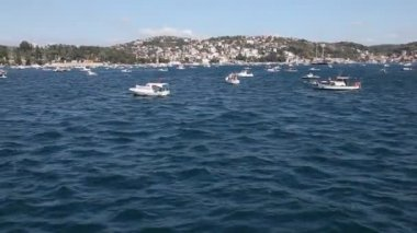 Fishing fleet HD 1080p — Stock Video