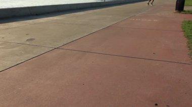 ドラゴン コースター — ストックビデオ