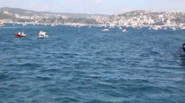 Fishing fleet 4 HD 1080p — Stock Video