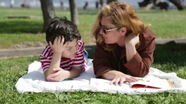 Mother  reading to son in the park — Stock video