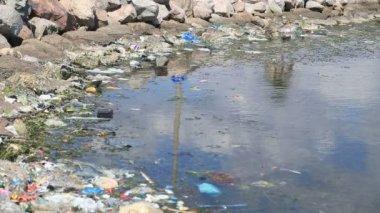 Znečištění vody — Stock video