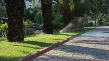 Grass Sprinkler watering — Stock Video