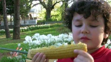 Little Boy eating corn — Stock Video