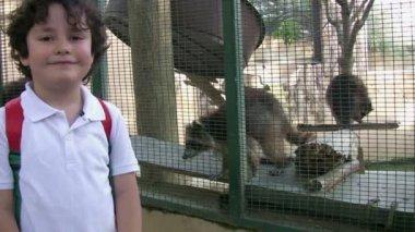 Little boy posing with racoon — Vídeo de Stock