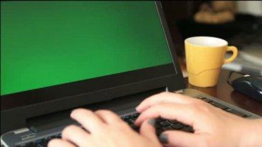 Woman using a laptop — Stock Video