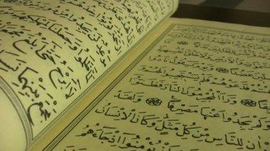 The Quran — Stock Video