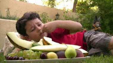 Little boy eating fruit at picnic outdoors — Stock Video