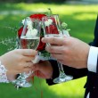 Bride and groom holding champagne glasses - Stock Image — Stock Photo #77474302