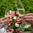 Bride and groom holding champagne glasses. Champagne Toast . Wedding glasses in their hands. — Stock Photo #77474214