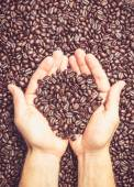 Pair of hands holding coffee beans — Stock Photo