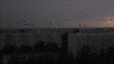 Rain on the glass. — Stock Video