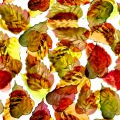 Seamless watercolor brown leaves pattern with white background — Stock Photo