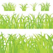 Big Green Grass, Isolated On White Background — Stock Vector