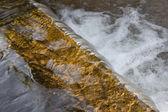 Falling Water — Stock Photo