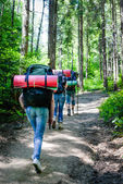 Young people hiking with backpacks in forest — Stockfoto