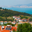 Panoramic view of Bosphorus channel and Istanbul city from the Heybeliada island — Stock Photo #75531139