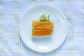 Panales con flor de tilo — Foto de Stock