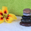 Spa therapy. Hot stones massage set up — Stock Photo #78929886
