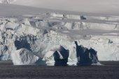 Antarctica, Cuverville Island — Stock Photo