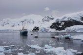 Paradise Bay, Antarctica — Stock Photo