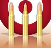 Bullets and target — Stock Vector