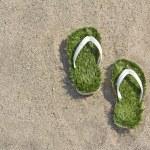 Grass flip flops sandals on the beach — Stock Photo #73662861