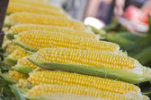 Corn piled up on market — Stock Photo