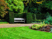 Bench in nicely trimmed green bushes in Regent's park, London. Landscape design — Stock Photo