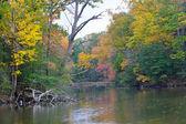 Autumn in Maryland — Stock Photo